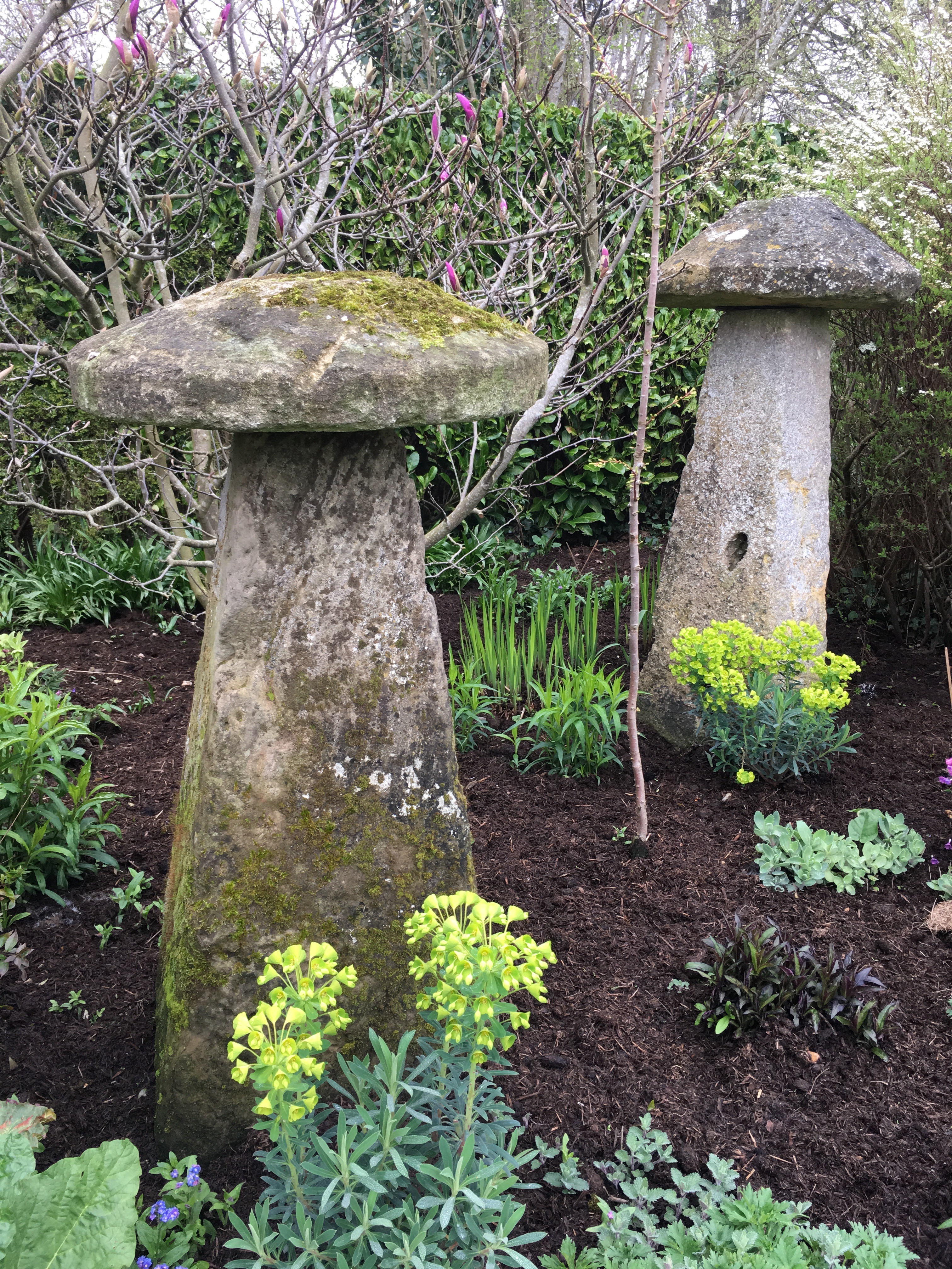 Mossy Staddle stones