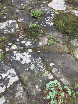 weathered crazy paving