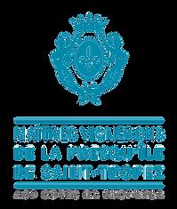 logo_mvst.png