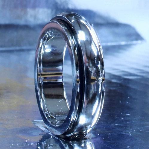 Silver Titanium Spinner Ring