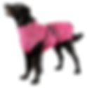 Chill Coat Dog Isolated Pink.png