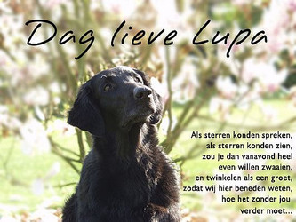 Vaarwel Lupa