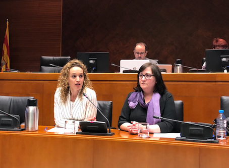 Maite Parejo speaks at the Commission for Citizen Participation and Human Rights
