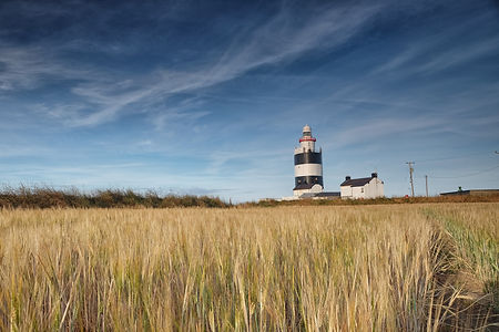 Hook Lighthouse Field.jpg