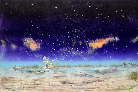 The Northern Night Sky