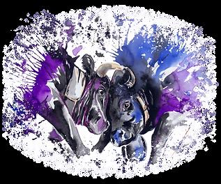 vaches violet.png
