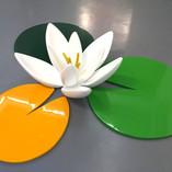 Lotus, 2017