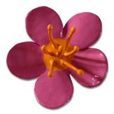 Blüte, 2010