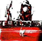 Invasion ReC #04, 2009