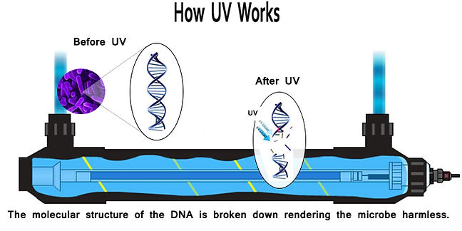 ultraviolet-how it works_lg.jpg