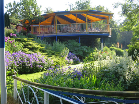 Cwm Weeg Garden NGS open day Sunday 4th July, 2 - 5