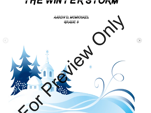 The Winter Storm- Grade 3