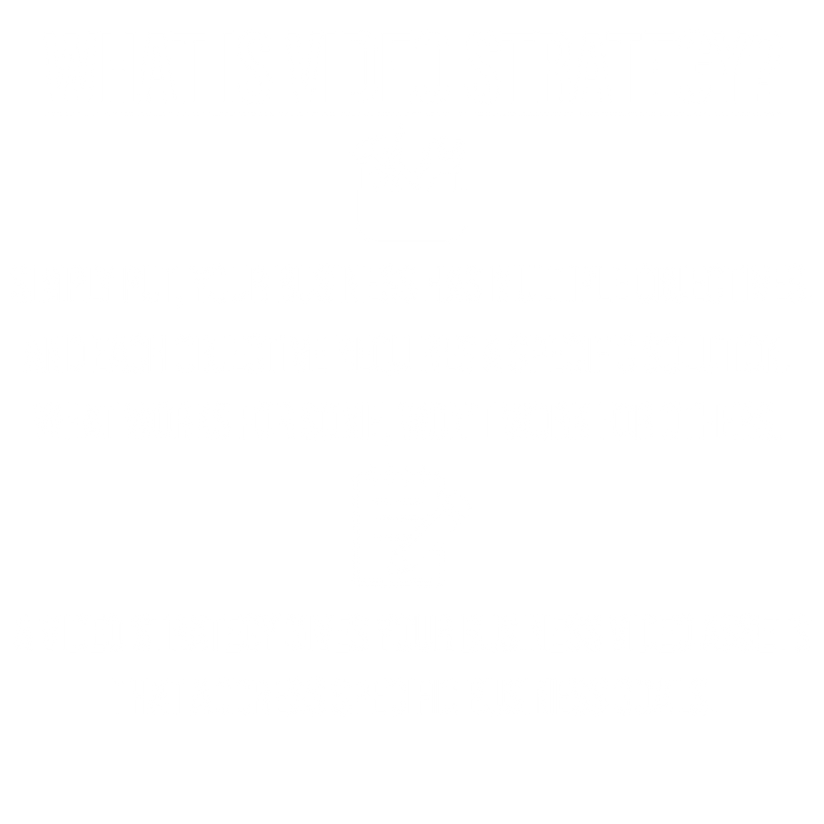 strategy.png
