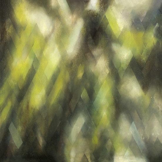 'Forest' Fine Art Giclée Print