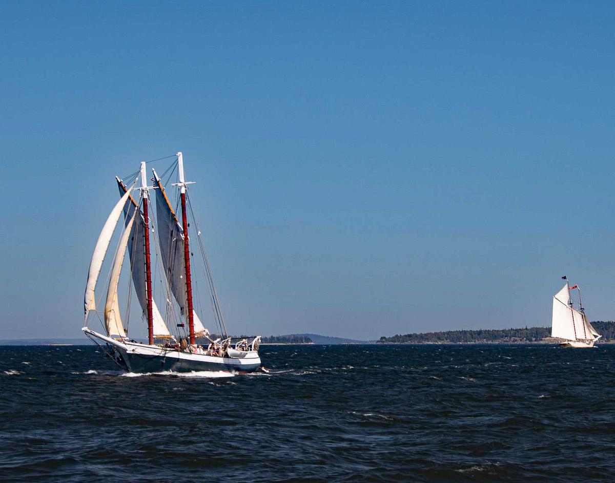 Full Sail by Linda J Hallifax