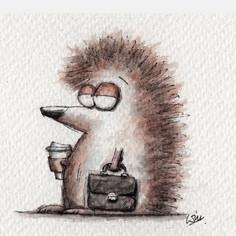 Hedgehog, back to work