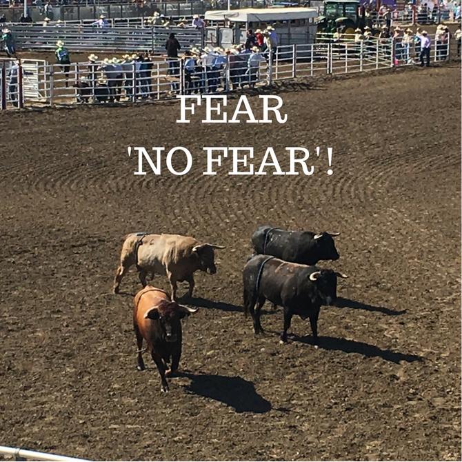 Fear 'No Fear'!
