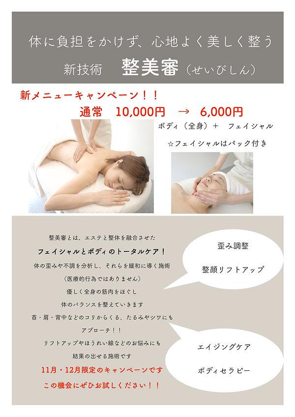 整美審PDF.jpg