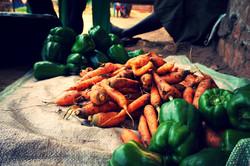Carrots & green pepper