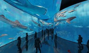 aquarium_human0021.png
