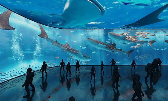 aquarium_human0022.png
