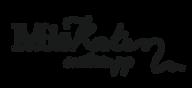 MISKATEN_FIRMA_esempio 1.png
