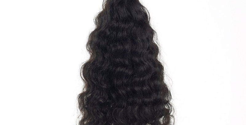 Burmese Curly