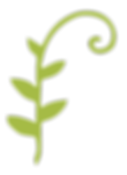 plant-flourish.png