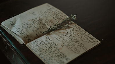 Nature Writing with Molly Murfee (2).jpg