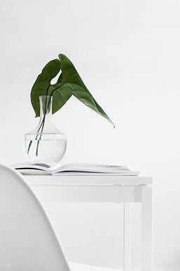 palm in vase zoomed out sarah-dorweiler-