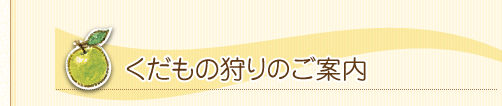 title_kari.jpg