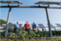 Solar workers.JPG