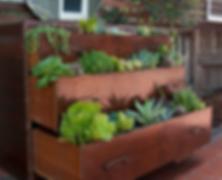 drawer garden.png