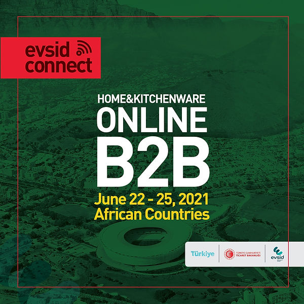EvsidConnect Africa Sq2.jpg