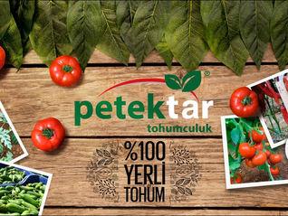PETEKTAR