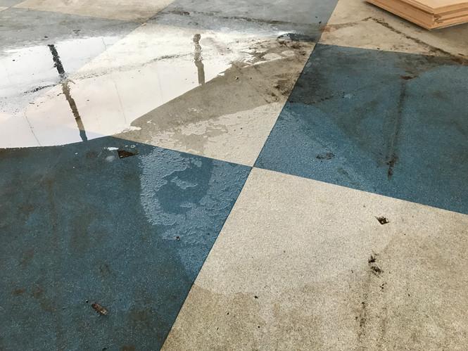 Specialist Floor Cleaning | Flamingo Theme Park