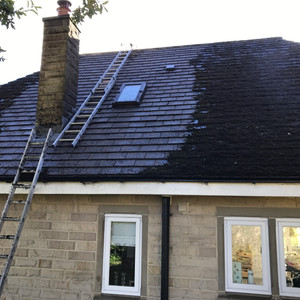 If Your Roof Is Covered In Moss, We Have The Solution...