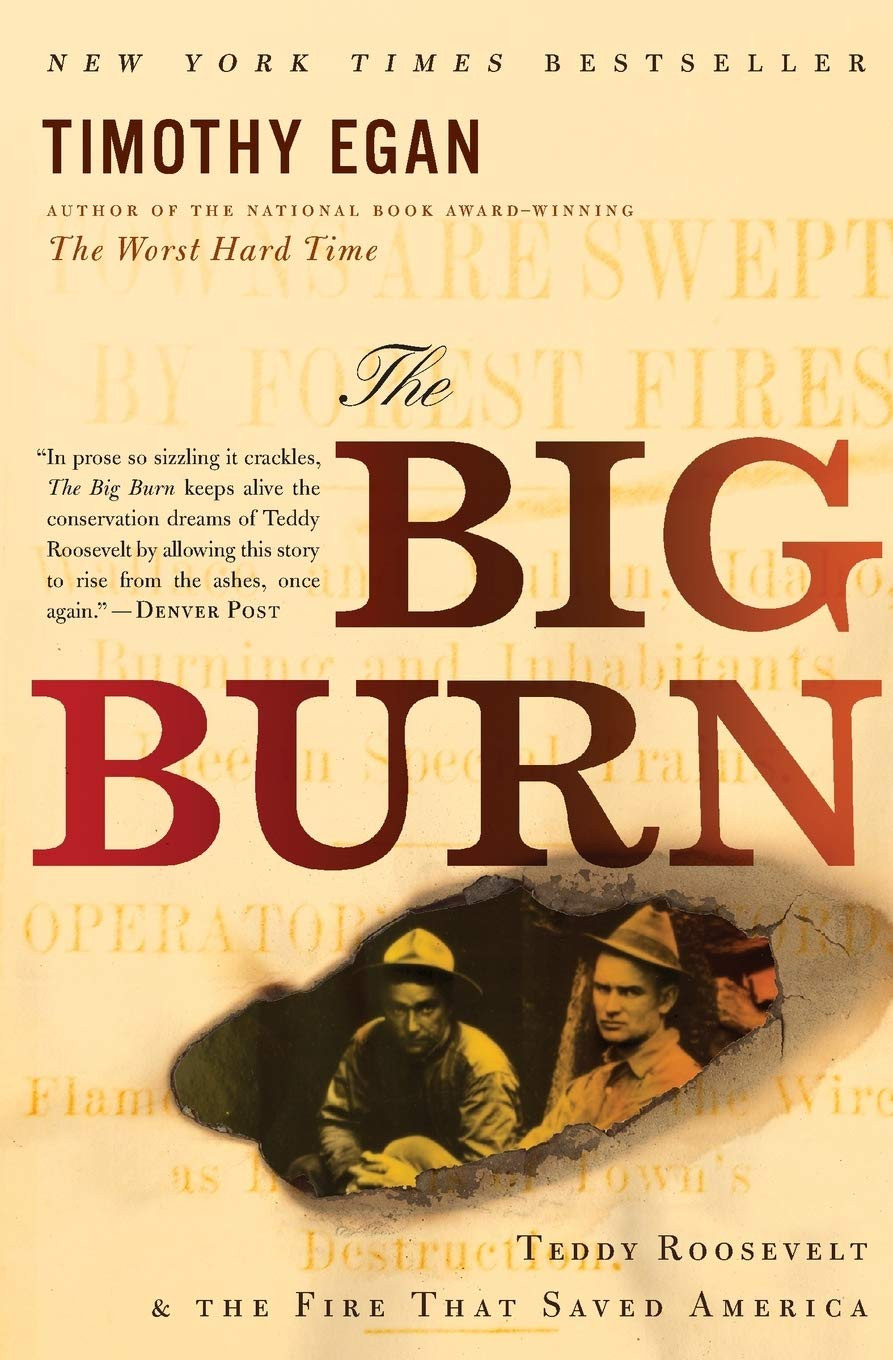 Cover photo of The Big Burn