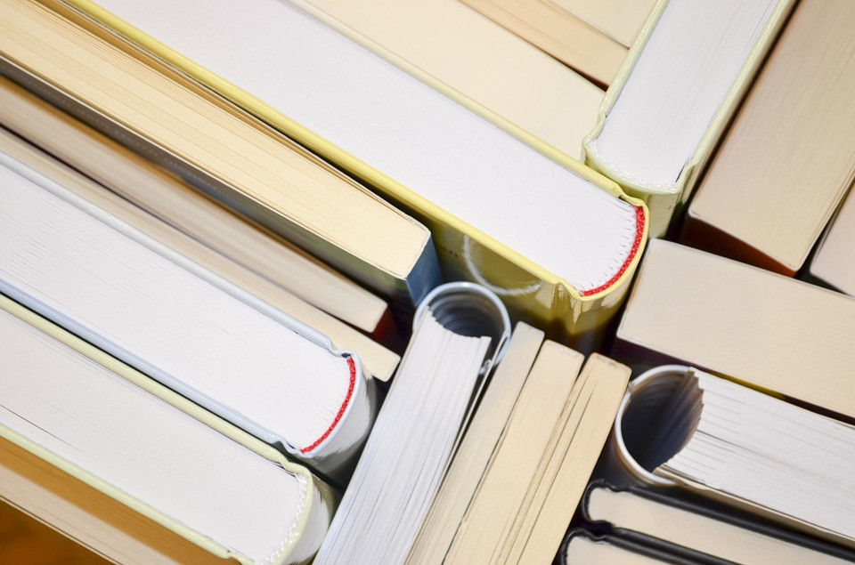 Top view of book spines
