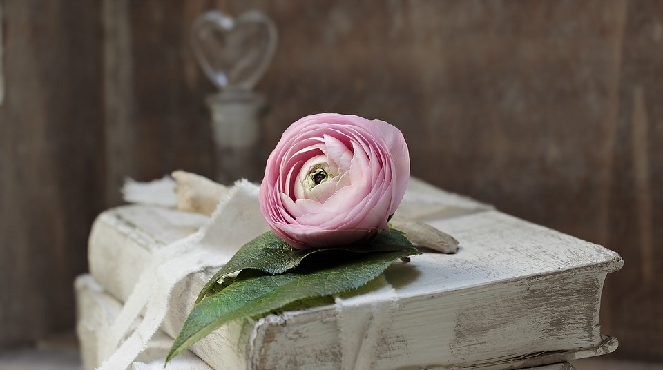 Pink flower with green leaf laying on top an old book