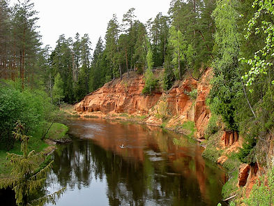 Latvian Environment