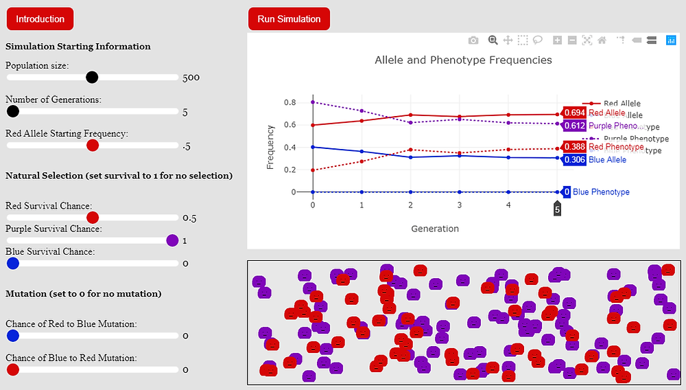 Simulation results, heterozygote advantage