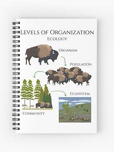 work-79814676-spiral-notebook.jpg