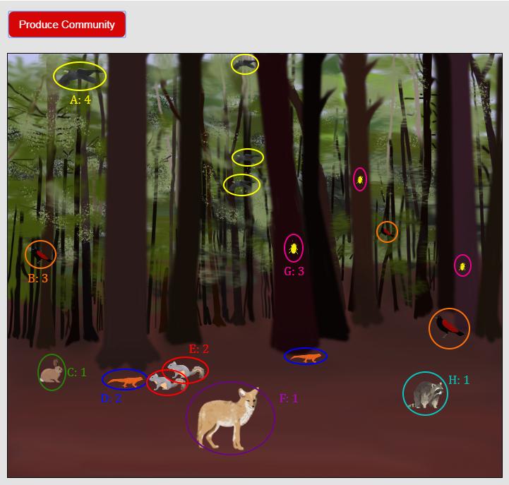 community produced by biodiversity simulation