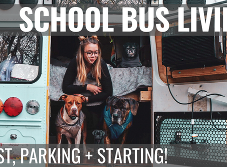 Top 3 faq about skoolie life! cost, parking + how to start