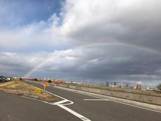 虹をみました(*^_^*)