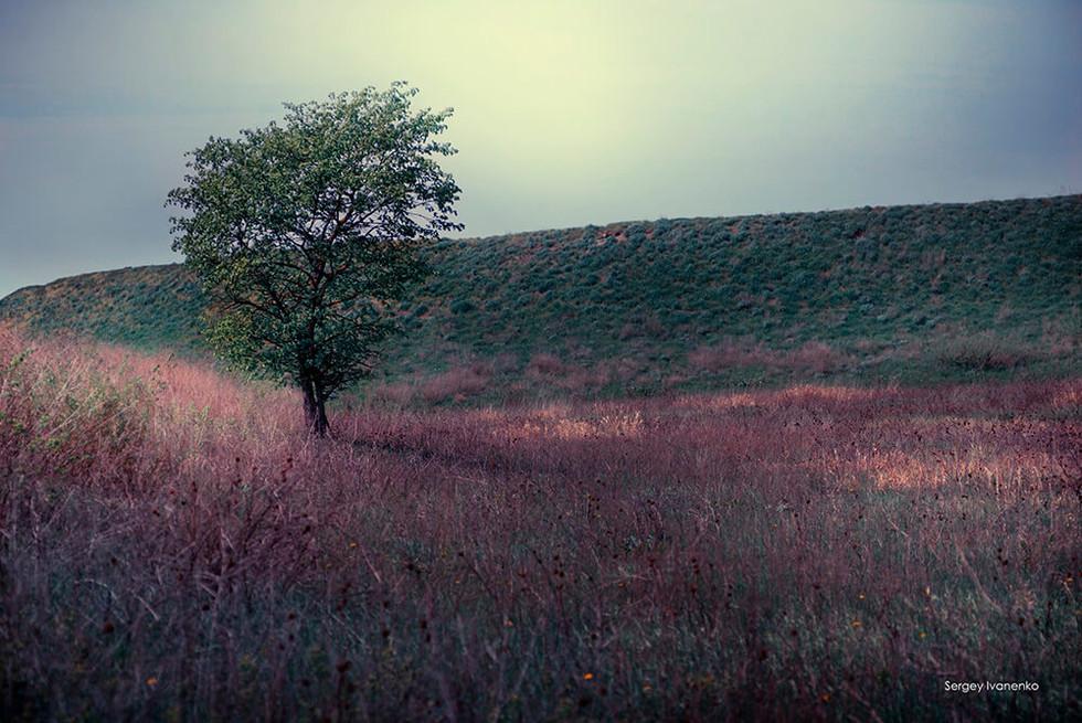 photo-landscape-47.jpg