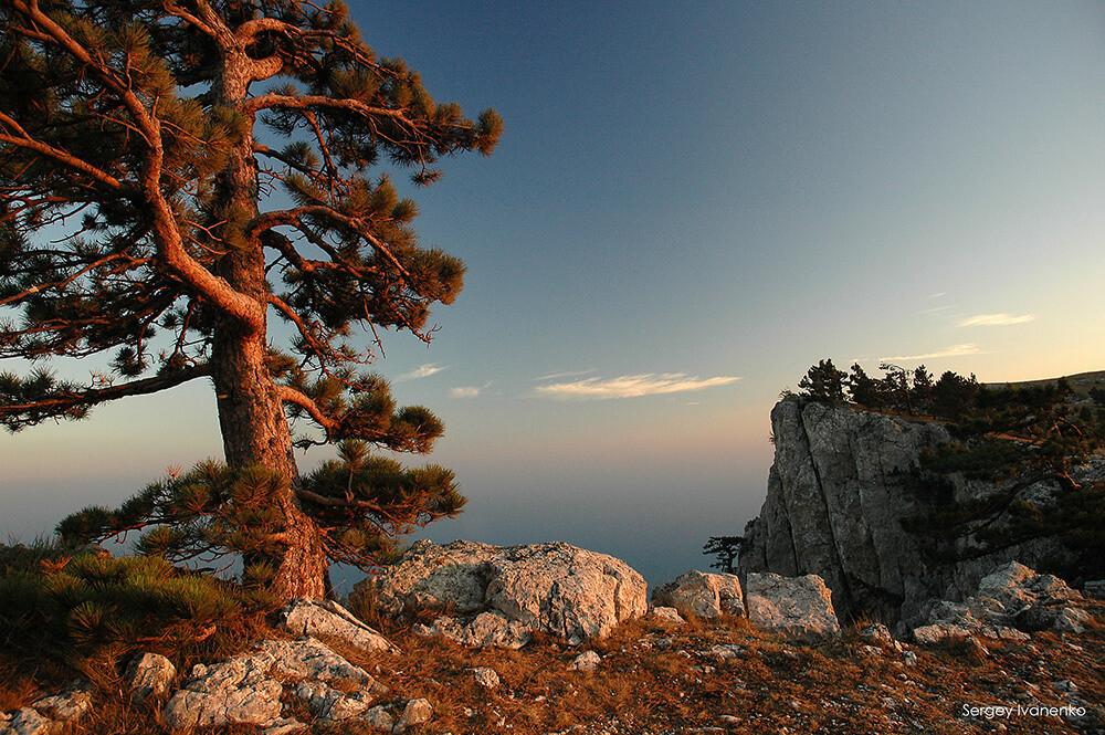 photo-landscape-19.jpg