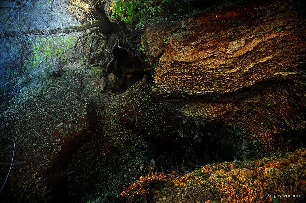 photo-landscape-35.jpg