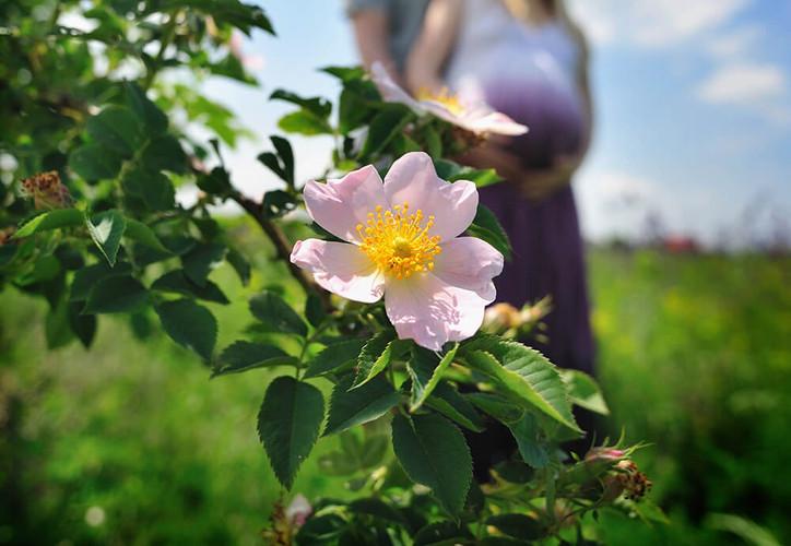Подарок беременной девушке Ростов